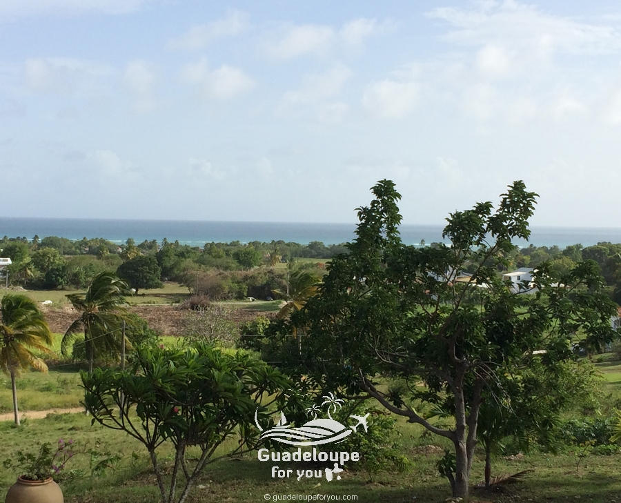 hill-seaview-marie-galante-guadeloupe