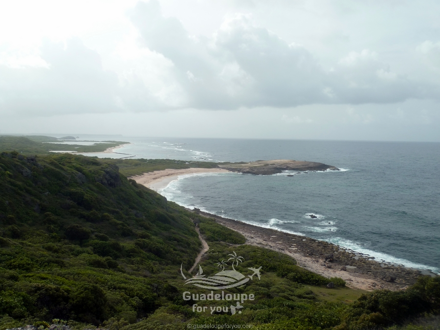 pointe-des-chateaux-beach-nature-1-guadeloupe.jpg