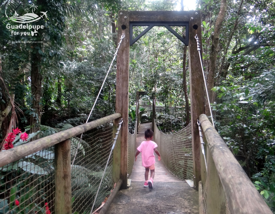 uadeloupe-kids-children-zoo-guadeloupe-mamelles-1-guadeloupe
